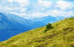 Olhando as montanhas imagens de stock