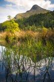 Olhando através de Glencoe Lochan para Beinn um ` Bheithir, um de t Fotos de Stock