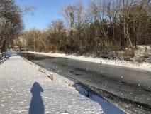 Olhando minha sombra na neve fotografia de stock royalty free