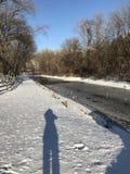 Olhando minha sombra na neve cintilando imagem de stock