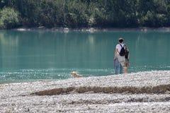 Olhando o cão que toma um banho no lago Imagens de Stock Royalty Free