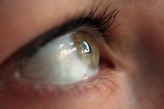 Olhando o olho Imagens de Stock