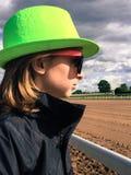 Olhando os cavalos Fotografia de Stock