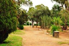 Olhao park Obrazy Royalty Free