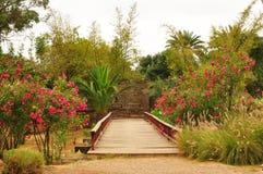 Olhao park Obraz Royalty Free