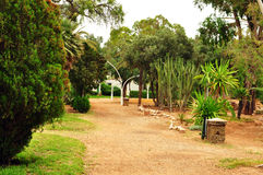Olhao Park Royalty Free Stock Images