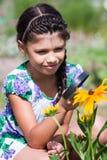 Olhar da menina no besouro através da lupa Foto de Stock Royalty Free