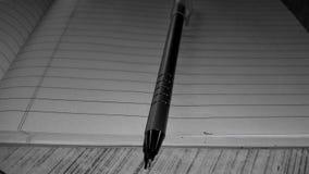 Olhar de Pen Metallic Fotografia de Stock
