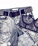 Olhar metálico da senhora glamoroso Calças de brim e sutiã do vintage com mais rhinest Fotografia de Stock