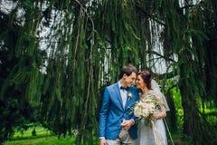 Olhe de cima nos pares bonitos do casamento que beijam no eveni Fotografia de Stock