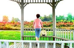 Olhe a mulher da rosa Imagem de Stock Royalty Free