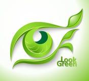 Olhe verde ilustração royalty free