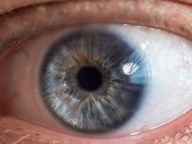 Olho azul do homem foto de stock royalty free