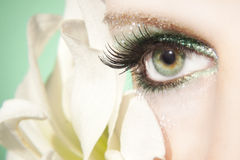 Olho bonito da mulher Fotografia de Stock