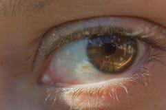 Olho da menina Fotos de Stock