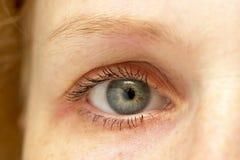 Olho da mulher Imagem de Stock Royalty Free