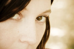 Olho da mulher Imagem de Stock