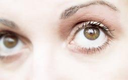 Olho da mulher Foto de Stock Royalty Free