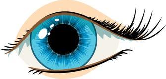 Olho da mulher azul Fotos de Stock