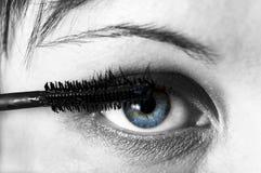 Olho da mulher com eyebrush. Foto de Stock