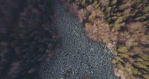 Olho de ascensão do pássaro disparado sobre pedras grandes do rio da montanha video estoque