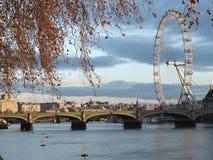 Olho de Londres - inverno Londres - caminhada no parque de Londres Fotos de Stock