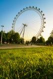 Olho de Londres, Londres, Inglaterra, o Reino Unido Imagens de Stock Royalty Free