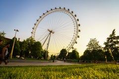 Olho de Londres, Londres, Inglaterra, o Reino Unido Foto de Stock