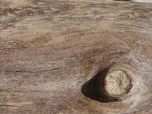 Olho de madeira Imagens de Stock