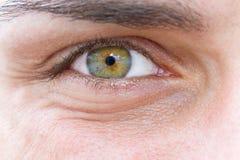 Olho de um homem Imagem de Stock