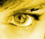 Olho dourado ilustração stock