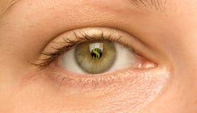 Olho e dólar Foto de Stock