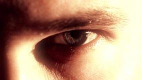Olho esquerdo de um homem Tiro macro Foto de Stock Royalty Free