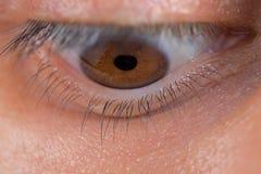 Olho esquerdo que olha para baixo Fotografia de Stock Royalty Free