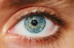 Olho humano Imagens de Stock Royalty Free