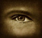 Olho humano com textura de Grunge ilustração stock