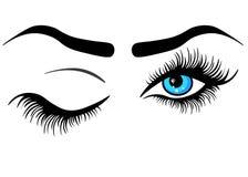 Olho humano do sumário da Web com pestanas longas e com a íris azul do inclinação, ilustração do vetor sobre o branco ilustração do vetor