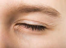 Olho humano fechado Imagem de Stock