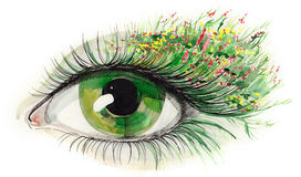 Olho humano verde Fotografia de Stock Royalty Free
