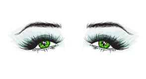 Olho luxuoso do ` s da mulher com as sobrancelhas perfeitamente dadas forma e chicotes completos Foto de Stock