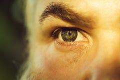 Olho masculino com lente listrada foto de stock royalty free