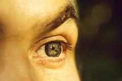 Olho masculino com lente listrada fotos de stock royalty free