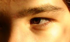 Olho para um olho Fotos de Stock Royalty Free