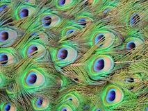 Olho para um olho Imagens de Stock