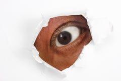 Olho que olha através do Livro Branco rasgado Foto de Stock Royalty Free