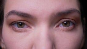 Olho-retrato do close-up da mulher de negócios moreno calma que olha seriamente na câmera no fundo preto video estoque