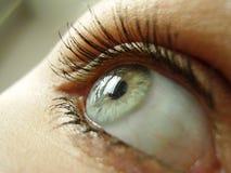 Olho verde Imagens de Stock