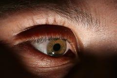 Olho verde Imagens de Stock Royalty Free
