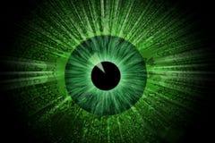 Olho verde Foto de Stock