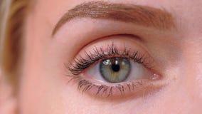 Olho verde de um fim louro novo da mulher acima filme